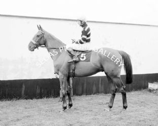 Lescargot with Tommy Carberry (591-01)